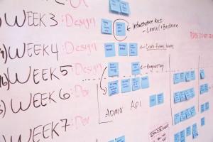 Team meetings and getting educator feedback